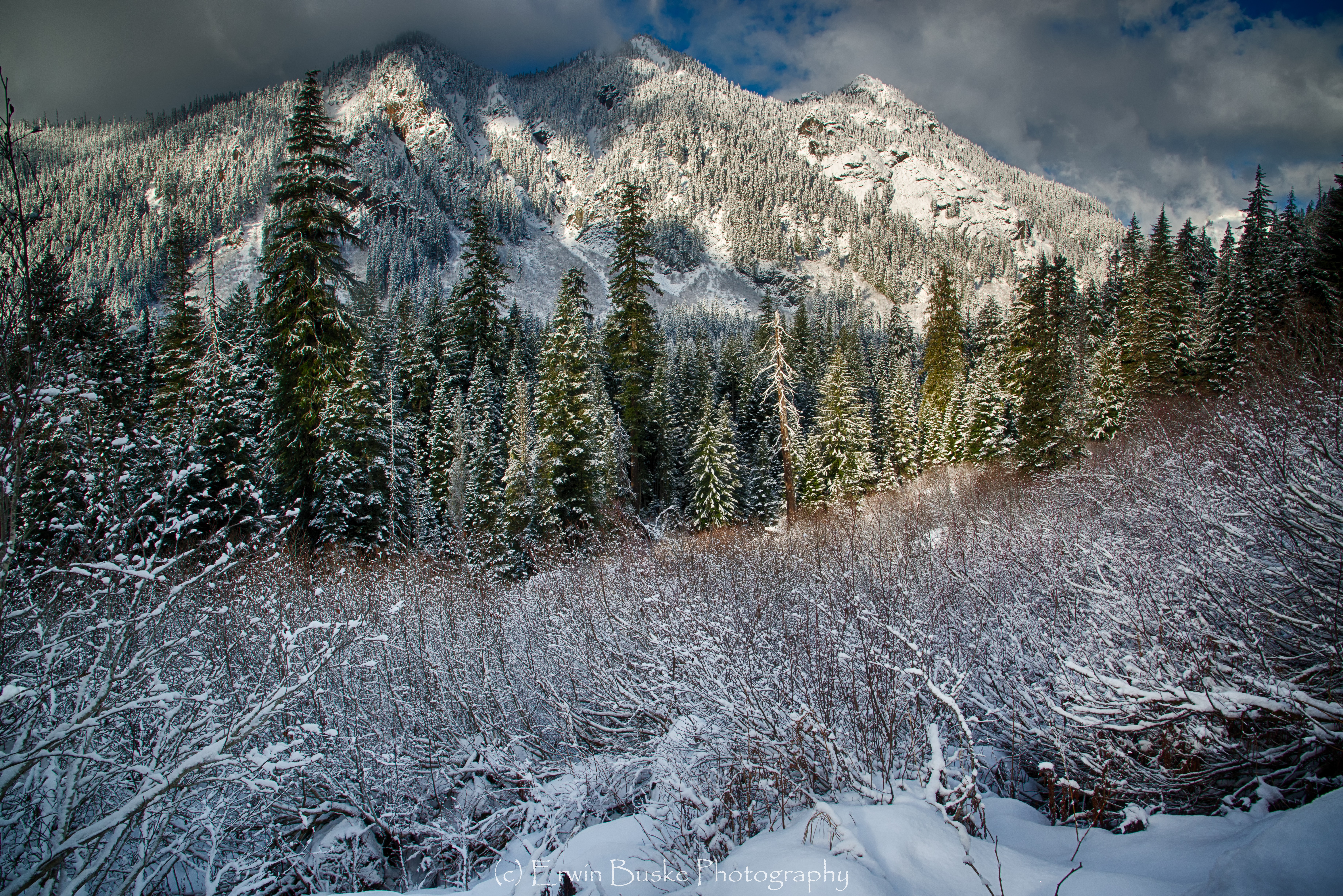 gold-creek-december0098