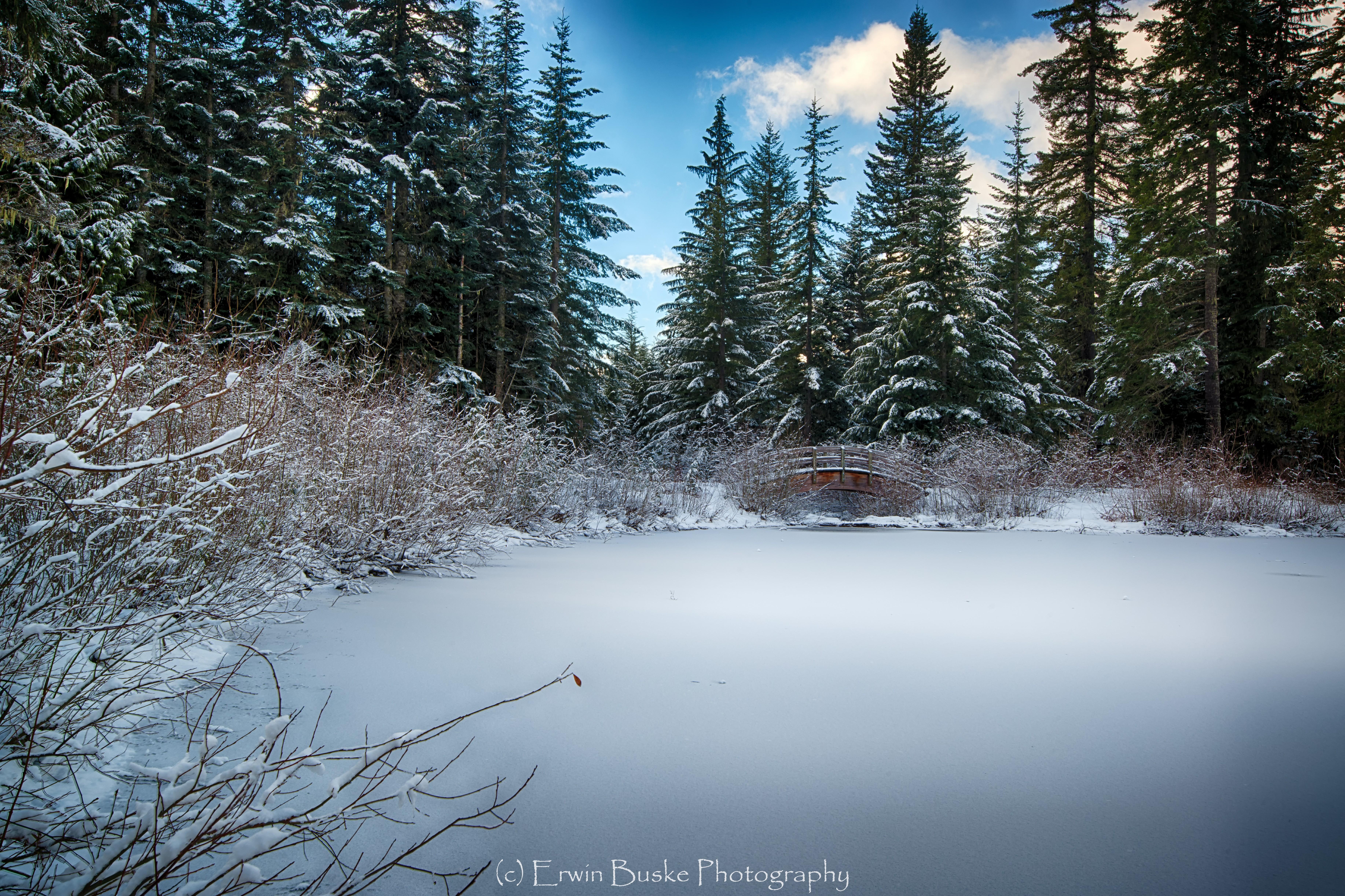 gold-creek-december0105_hdr