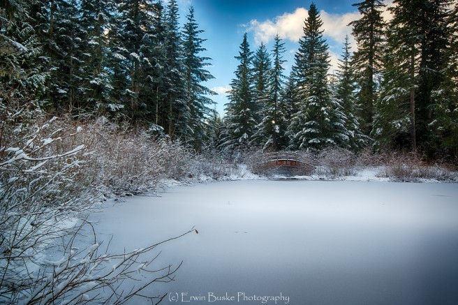 gold-creek-december0105_hdr