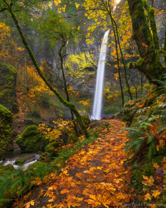 gorge-2016-autumn0323