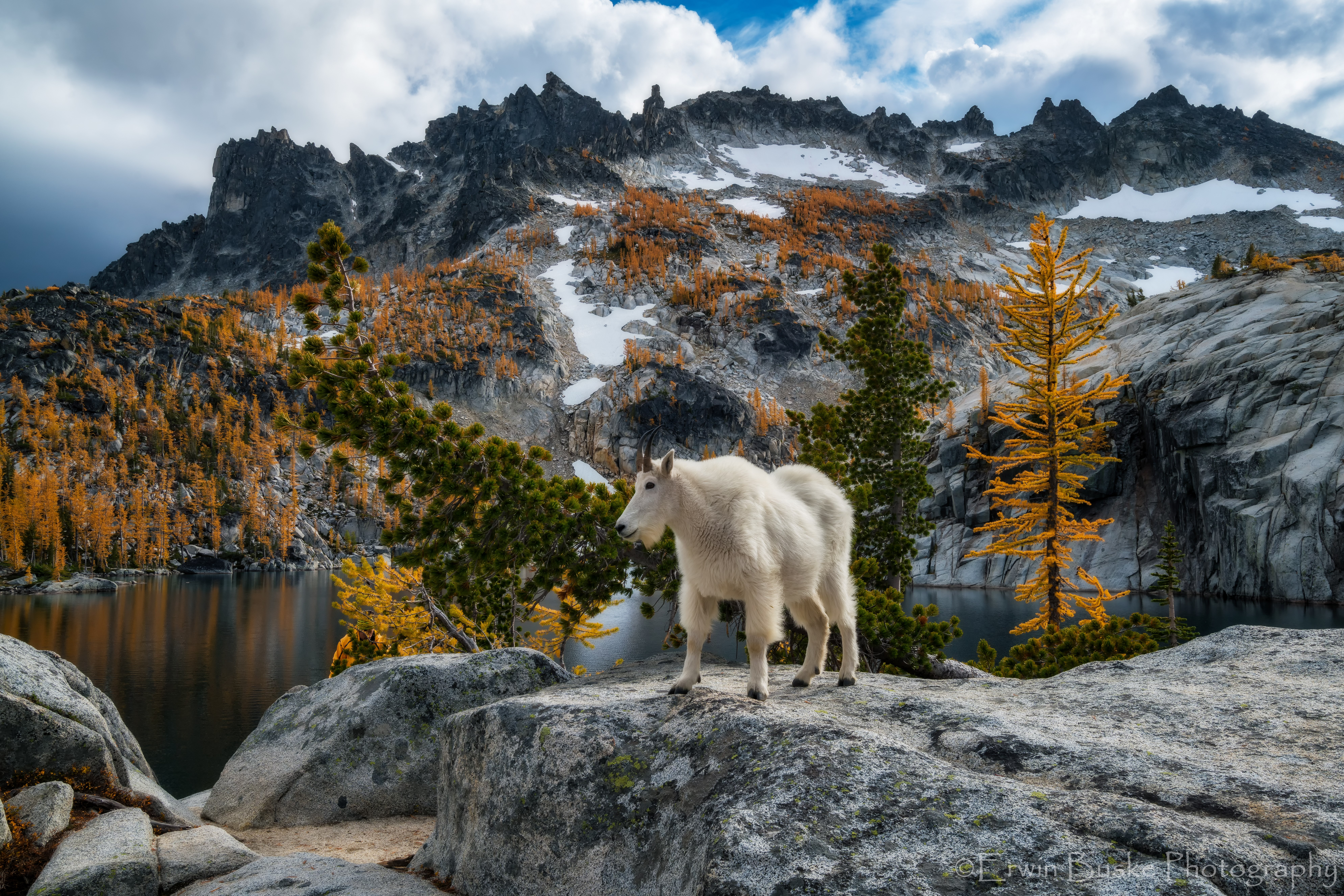 2016 Enchantments0001