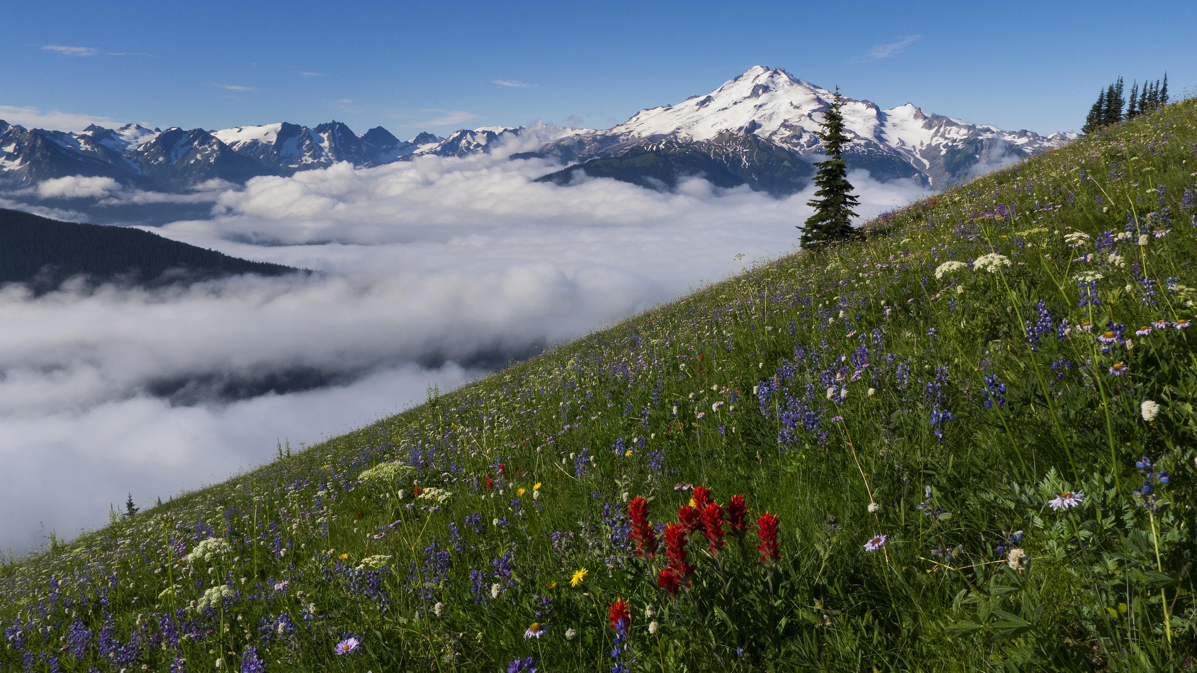 Glacier Peak 0355