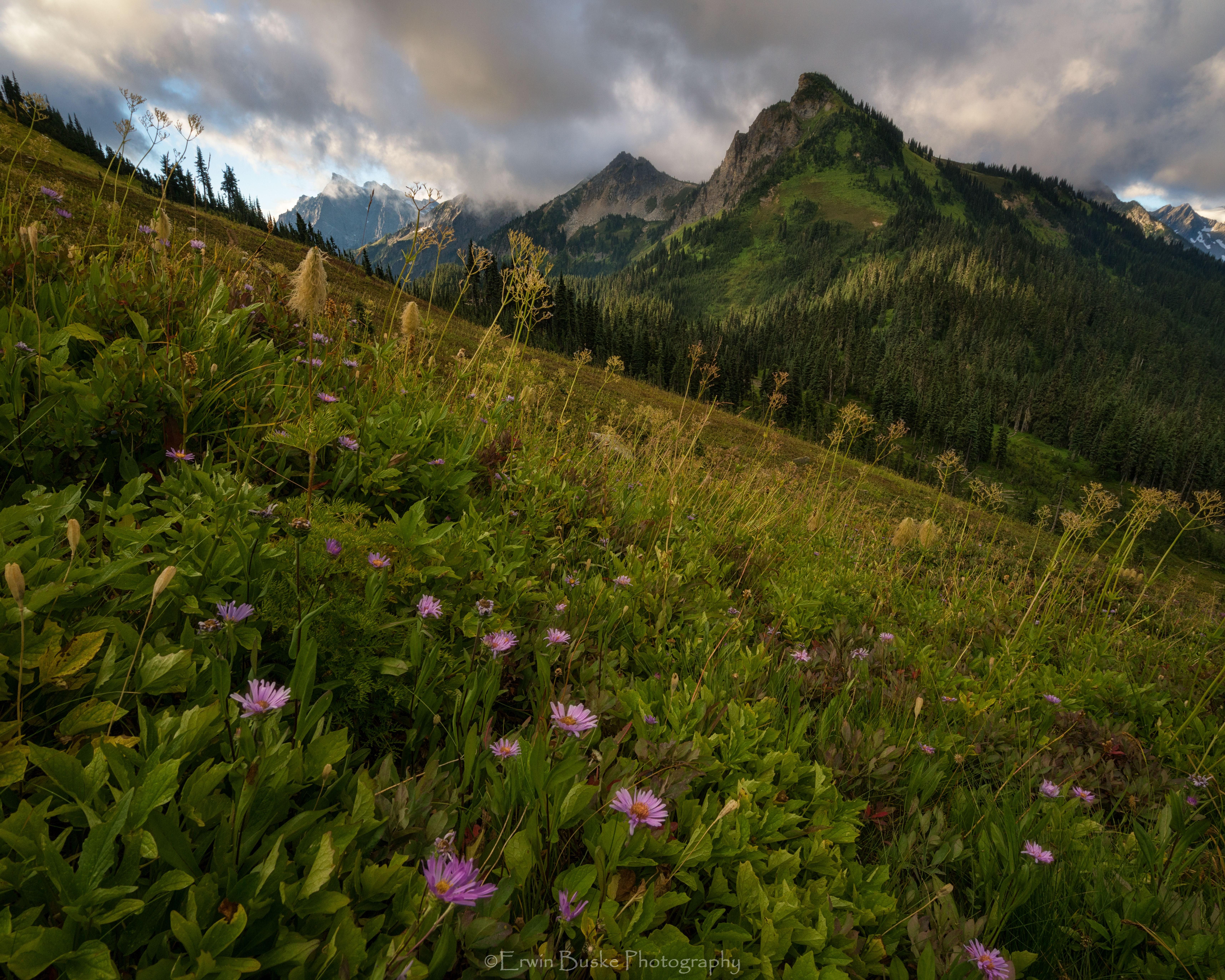 Glacier Peak 2017 Images2452 copyfinalcroplighten