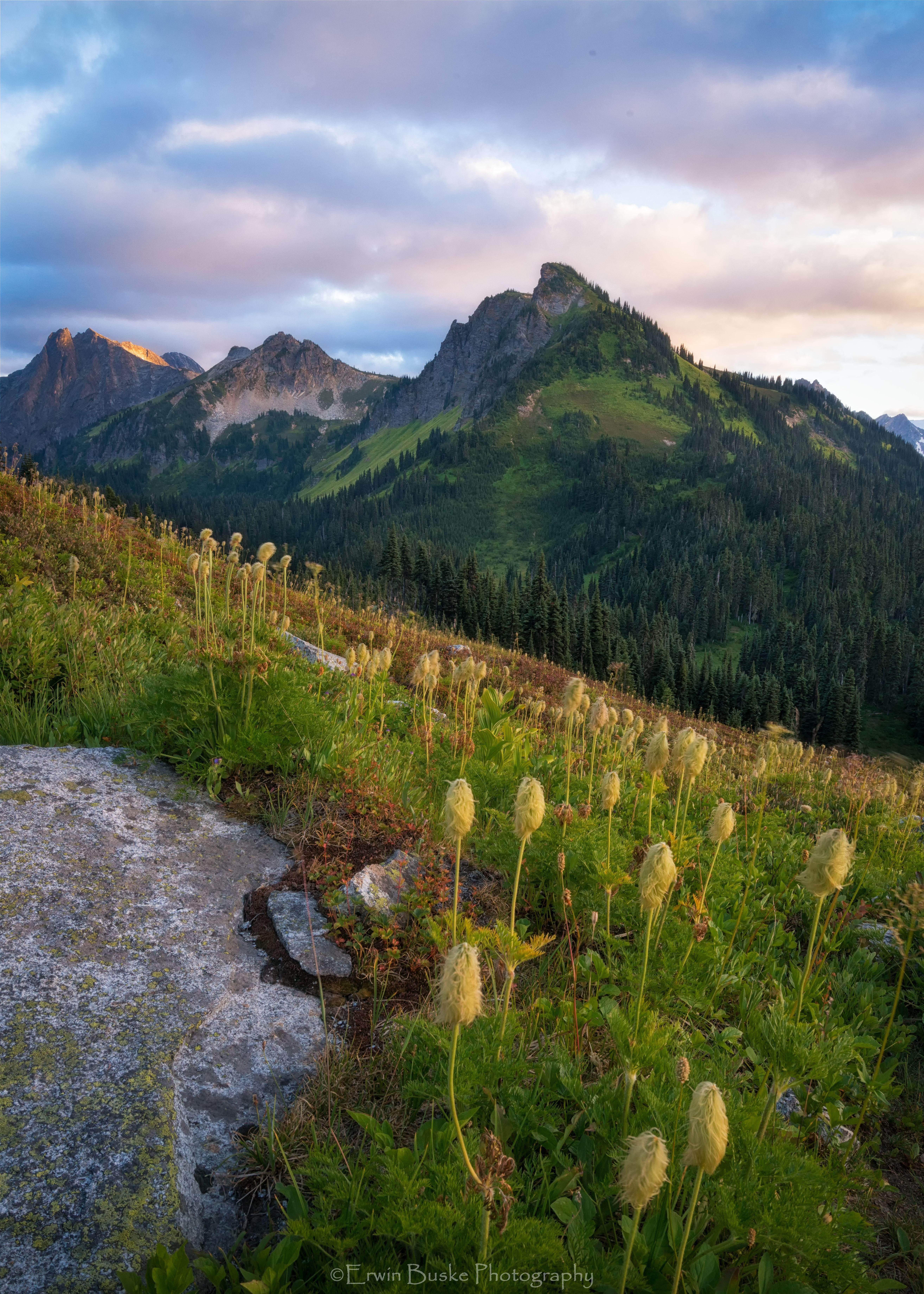 Glacier Peak 2017 Images2498 copy