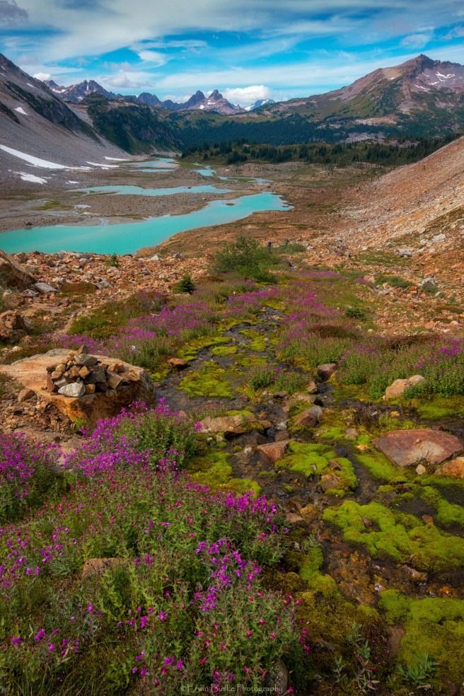 Glacier Peak0085